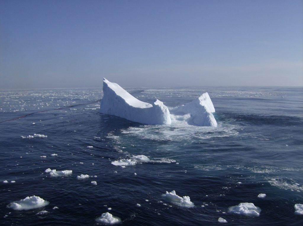 wayward iceburg
